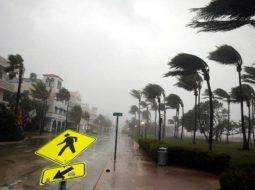 FLORIDA OOYALA-large.jpg