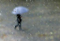 reshje-shiu.jpg