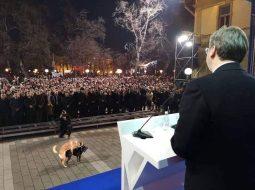 E rrallë/ Seksi i një çifti qensh i prish fjalimin presidentit Vuçiç