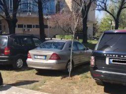 VIDEO/ Kur ka miting partia lejohet parkimi mbi lulishte dhe trotuar