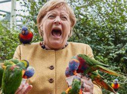 FOTO/ Momentet më pikante të 16 viteve në pushtet të Angela Merkelit